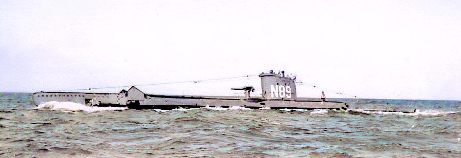 Upright (N89)