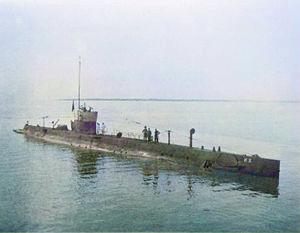 Varne (P81)